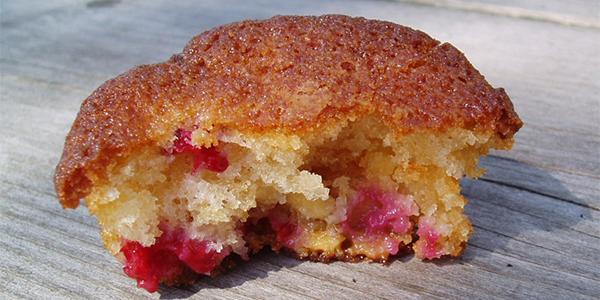 glutenvrij-recepten-muffins-met-wijnbessen-en-witte-chocolade